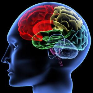 ImPACT Concussion Test